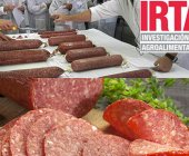 IRTA prepara la quinta edición de su 'International Course in Dry Cured Meat Products'